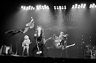 Aerosmith Fine Art Print