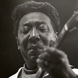 Muddy Waters Download