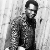 Robert Cray Download