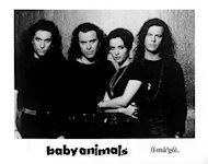 Baby Animals Promo Print