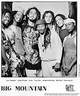 Big Mountain Promo Print