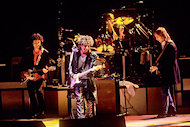 Tom Petty & the Heartbreakers BG Archives Print