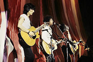 Ron Wood BG Archives Print
