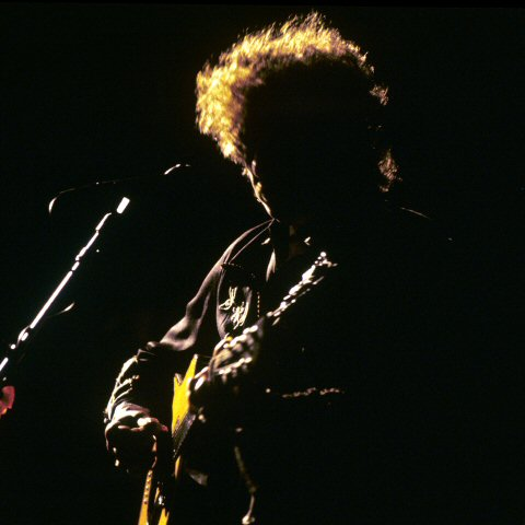 Bob Dylan Limited Editions
