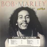 Bob Marley Vinyl (Used)