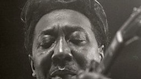 Muddy Waters Blues Band at Newport Jazz Festival on Jul 1, 1965