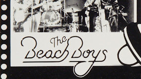 The Beach Boys at Springfield Civic Center on May 15, 1979
