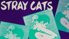 Stray Cats at Ritz on Oct 18, 1988