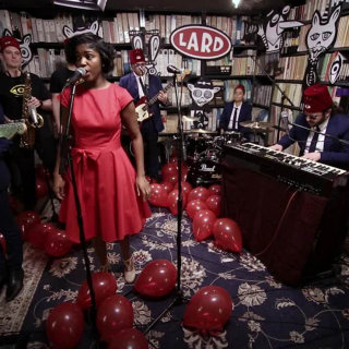 Lard Dog & The Band of Shy at Paste Studios on May 25, 2017
