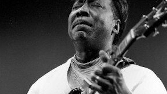 Muddy Waters, Johnny Winter & James Cotton concert at Palladium on Mar 4, 1977