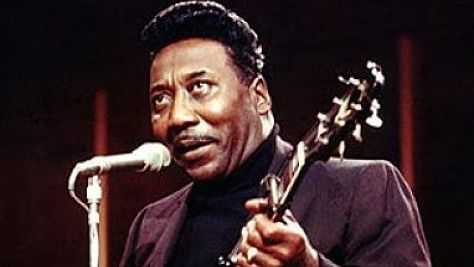 Blues: A Salute to Muddy Waters