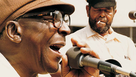 Blues: A Salute to Sonny Terry