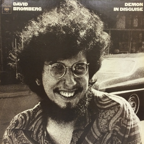 David Bromberg Demon In Disguise
