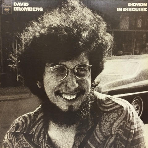 David Bromberg Vinyl (Used)