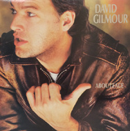 David Gilmour Vinyl (Used)