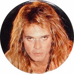 David Lee Roth Vintage Pin