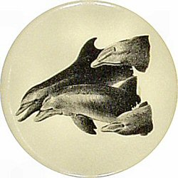 Dolphins - Unanticipated Intelligence Vintage Pin