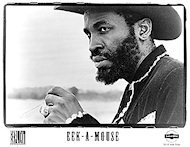 Eek-a-Mouse Promo Print