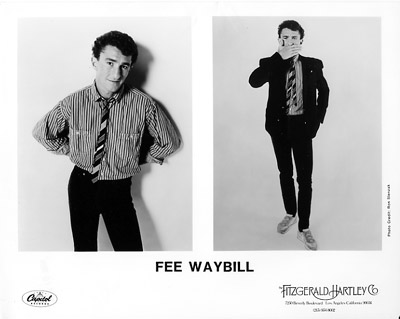 Fee WaybillPromo Print