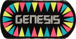 GenesisVintage Pin