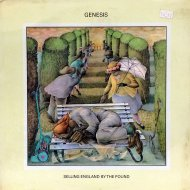 "Genesis Vinyl 12"" (New)"
