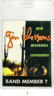 Gin Blossoms Laminate