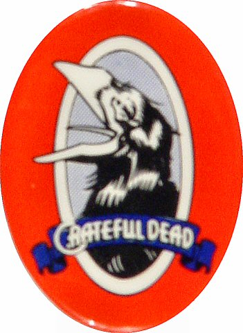 Grateful DeadVintage Pin