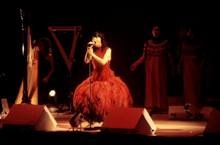 Bjork BG Archives Print from Paramount Theatre on 17 Oct 01: 16x20 C-Print
