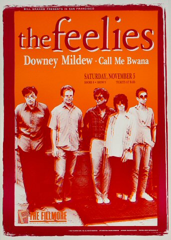 "The Feelies Poster from Fillmore Auditorium on 05 Nov 88: 13 1/2"" x 19 1/2"""