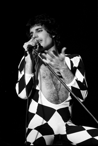 Freddie MercuryFine Art Print