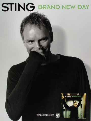 "Sting Poster  : 18"" x 18"""