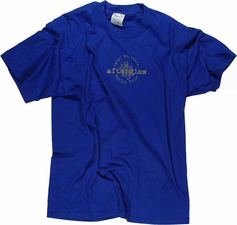 Sarah McLachlan Men's Vintage T-Shirt  : Large