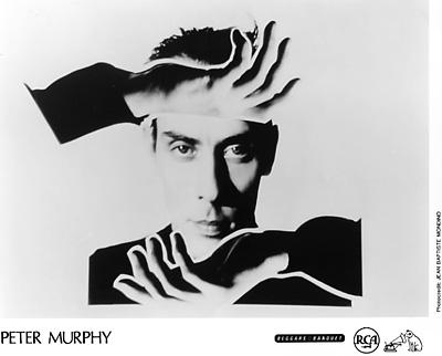 Peter Murphy Promo Print  : 8x10 RC Print