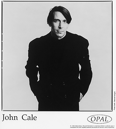 John Cale Promo Print  : 8x10 RC Print