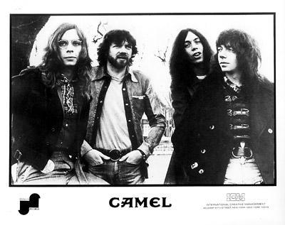 Camel Promo Print  : 8x10 RC Print