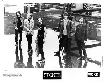 Sponge Promo Print  : 8x10 RC Print