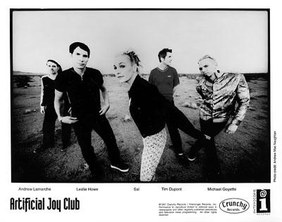Artificial Joy Club Promo Print  : 8x10 RC Print