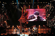 AC/DCBG Archives Print