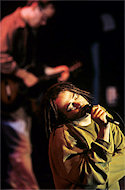 Counting Crows BG Archives Print
