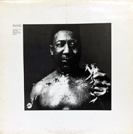 "Muddy Waters Vinyl 12"" (Used)"