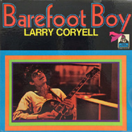 "Larry Coryell Vinyl 12"" (Used)"