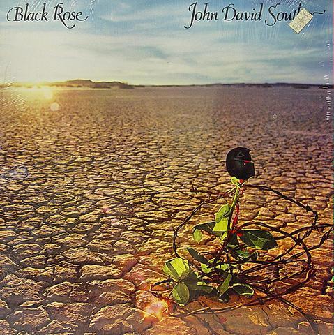 "J.D. Souther Vinyl 12"" (New)"
