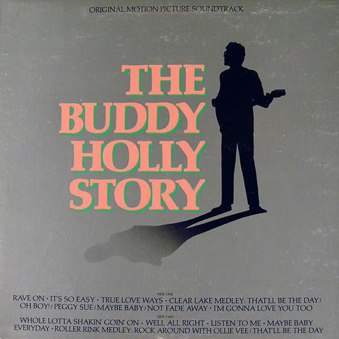 """Gary Busey Vinyl 12"""" (Used)"""