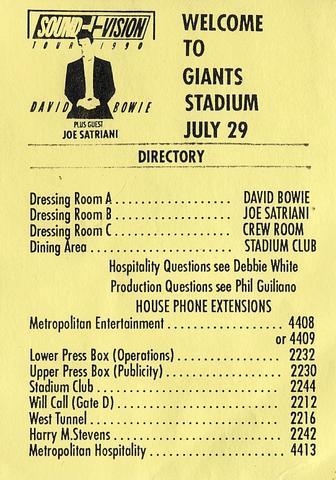 David Bowie Laminate