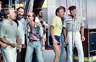 The Beach Boys BG Archives Print