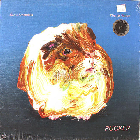 "Scott Amendola Vinyl 12"" (New)"