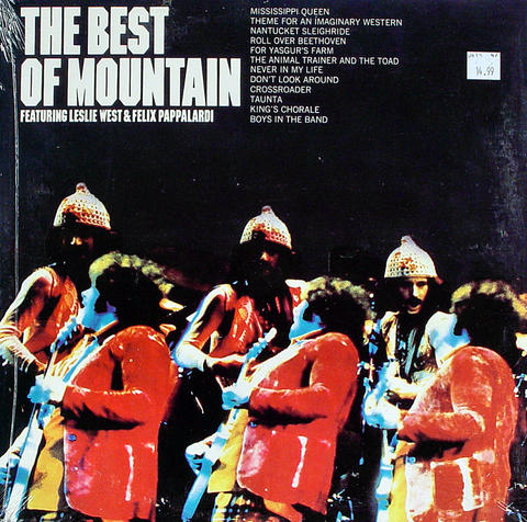 "Mountain Vinyl 12"" (New)"