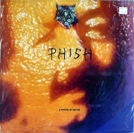 "Phish Vinyl 12"" (New)"