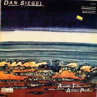 """Dan Siegel Vinyl 12"""" (Used)"""
