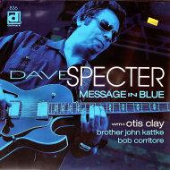 """Dave Specter Vinyl 12"""" (New)"""